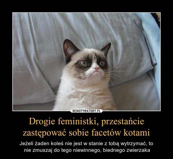 Drogie feministki, przestańcie zastępować sobie facetów kotami – Jeżeli żaden koleś nie jest w stanie z tobą wytrzymać, to nie zmuszaj do tego niewinnego, biednego zwierzaka