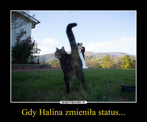 Gdy Halina zmieniła status... –