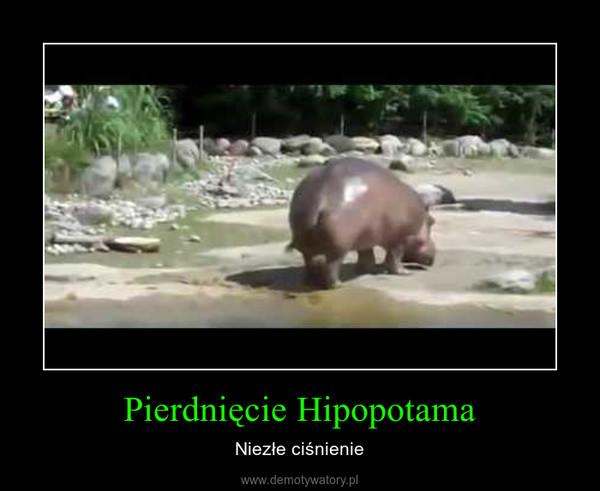 Pierdnięcie Hipopotama – Niezłe ciśnienie