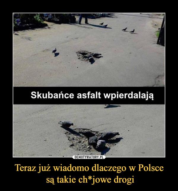 Teraz już wiadomo dlaczego w Polsce są takie ch*jowe drogi –