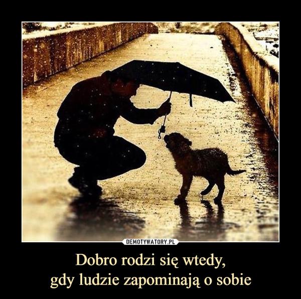 Dobro rodzi się wtedy,gdy ludzie zapominają o sobie –