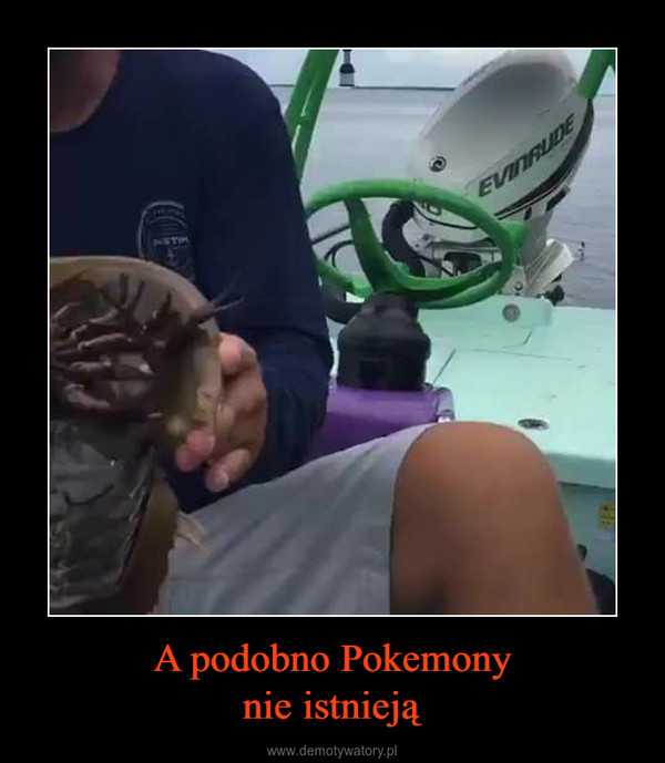 A podobno Pokemonynie istnieją –