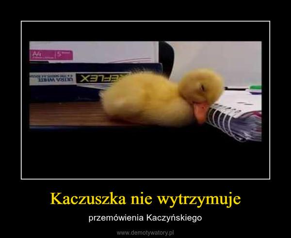 Kaczuszka nie wytrzymuje – przemówienia Kaczyńskiego