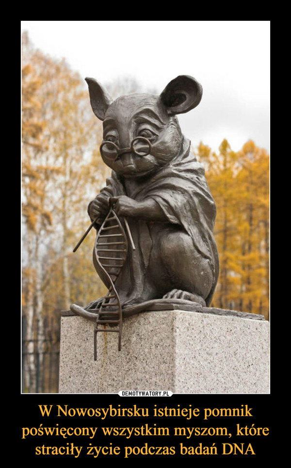 W Nowosybirsku istnieje pomnik poświęcony wszystkim myszom, które straciły życie podczas badań DNA –