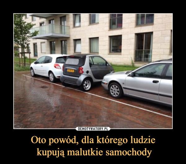 Oto powód, dla którego ludzie kupują malutkie samochody –