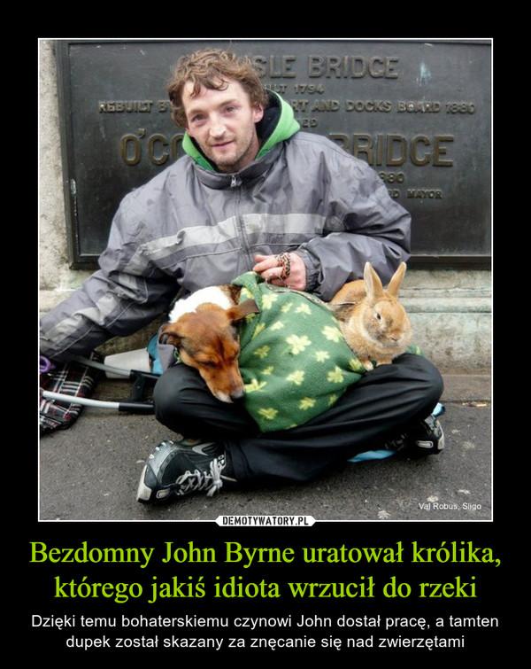 Bezdomny John Byrne uratował królika, którego jakiś idiota wrzucił do rzeki – Dzięki temu bohaterskiemu czynowi John dostał pracę, a tamten dupek został skazany za znęcanie się nad zwierzętami