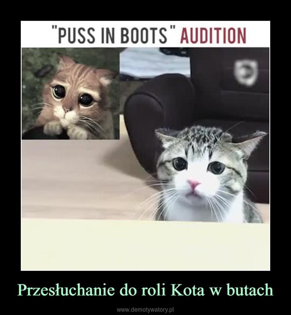 Przesłuchanie do roli Kota w butach –