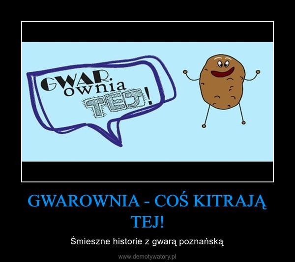 GWAROWNIA - COŚ KITRAJĄ TEJ! – Śmieszne historie z gwarą poznańską