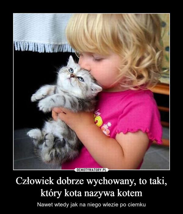 Człowiek dobrze wychowany, to taki, który kota nazywa kotem – Nawet wtedy jak na niego wlezie po ciemku