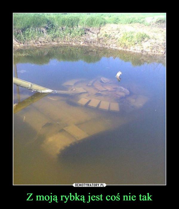 Z moją rybką jest coś nie tak –