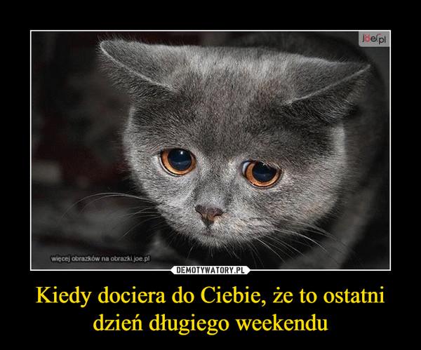 Kiedy dociera do Ciebie, że to ostatni dzień długiego weekendu –