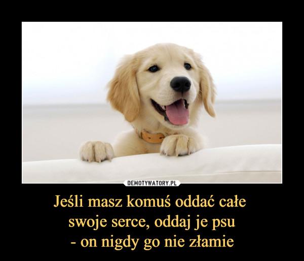 Jeśli masz komuś oddać całe swoje serce, oddaj je psu- on nigdy go nie złamie –