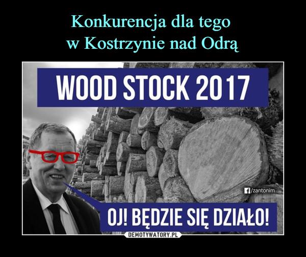 –  wood stock 2017oj! będzie się działo!