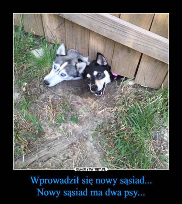 Wprowadził się nowy sąsiad...Nowy sąsiad ma dwa psy... –