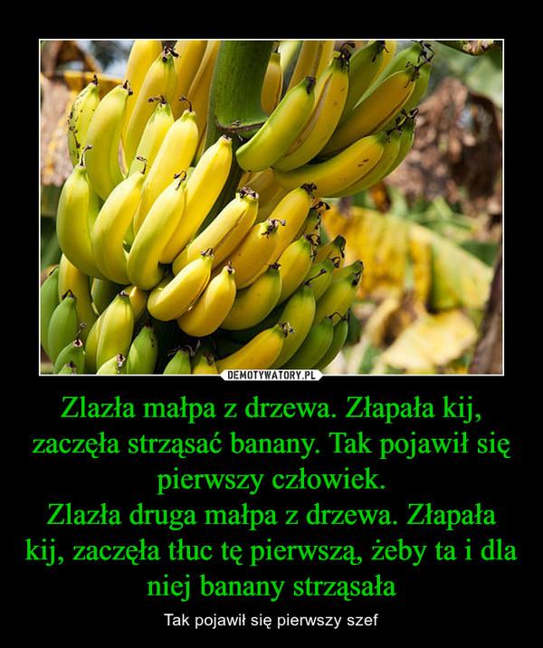 Zlazła małpa z drzewa. Złapała kij, zaczęła strząsać banany. Tak pojawił się pierwszy człowiek.Zlazła druga małpa z drzewa. Złapała kij, zaczęła tłuc tę pierwszą, żeby ta i dla niej banany strząsała – Tak pojawił się pierwszy szef