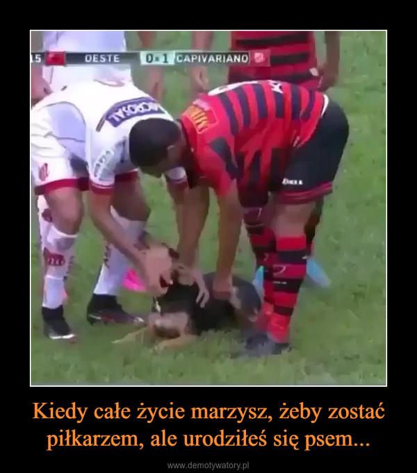 Kiedy całe życie marzysz, żeby zostać piłkarzem, ale urodziłeś się psem... –