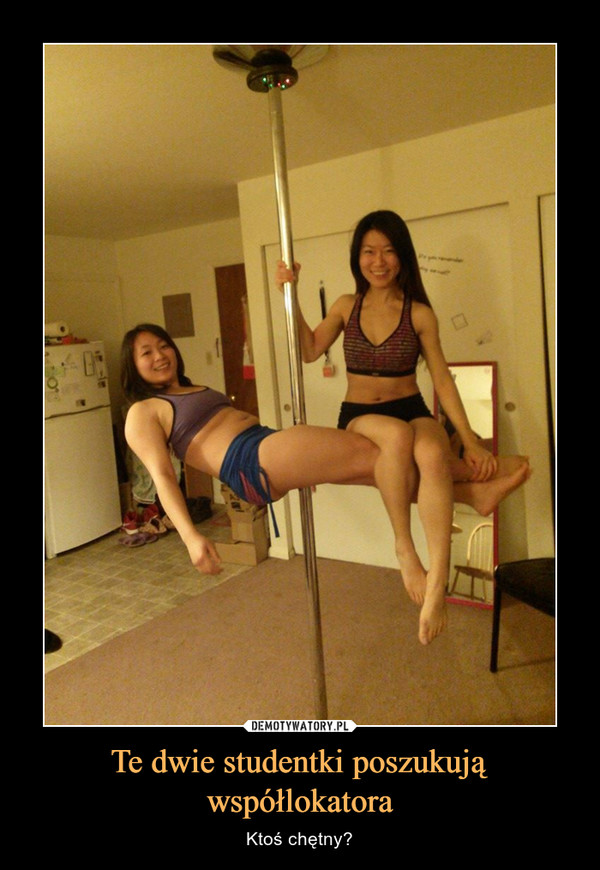 Te dwie studentki poszukują współlokatora – Ktoś chętny?