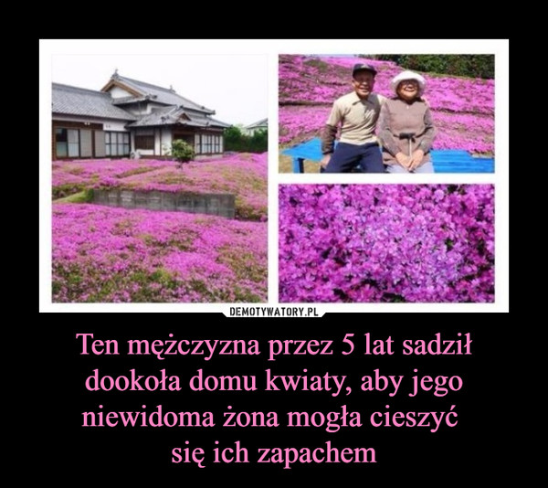 Ten mężczyzna przez 5 lat sadził dookoła domu kwiaty, aby jego niewidoma żona mogła cieszyć się ich zapachem –