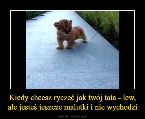 Kiedy chcesz ryczeć jak twój tata - lew, ale jesteś jeszcze malutki i nie wychodzi –
