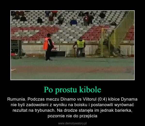 Po prostu kibole – Rumunia. Podczas meczu Dinamo vs Viitorul (0:4) kibice Dynama nie byli zadowoleni z wyniku na boisku i postanowili wyrównać rezultat na trybunach. Na drodze stanęła im jednak barierka, pozornie nie do przejścia