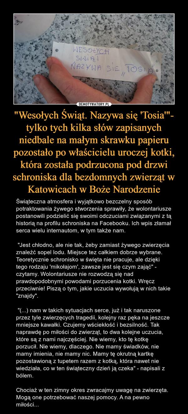 """""""Wesołych Świąt. Nazywa się 'Tosia'""""- tylko tych kilka słów zapisanych niedbale na małym skrawku papieru pozostało po właścicielu uroczej kotki, która została podrzucona pod drzwi schroniska dla bezdomnych zwierząt w Katowicach w Boże Narodzenie – Świąteczna atmosfera i wyjątkowo bezczelny sposób potraktowania żywego stworzenia sprawiły, że wolontariusze postanowili podzielić się swoimi odczuciami związanymi z tą historią na profilu schroniska na Facebooku. Ich wpis złamał serca wielu internautom, w tym także nam. """"Jest chłodno, ale nie tak, żeby zamiast żywego zwierzęcia znaleźć sopel lodu. Miejsce tez całkiem dobrze wybrane. Teoretycznie schronisko w święta nie pracuje, ale dzięki tego rodzaju 'mikołajom', zawsze jest się czym zająć"""" - czytamy. Wolontariusze nie rozwodzą się nad prawdopodobnymi powodami porzucenia kotki. Wręcz przeciwnie! Piszą o tym, jakie uczucia wywołują w nich takie """"znajdy"""". """"(...) nam w takich sytuacjach serce, już i tak naruszone przez tyle zwierzęcych tragedii, kolejny raz pęka na jeszcze mniejsze kawałki. Czujemy wściekłość i bezsilność. Tak naprawdę po miłości do zwierząt, to dwa kolejne uczucia, które są z nami najczęściej. Nie wiemy, kto tę kotkę porzucił. Nie wiemy, dlaczego. Nie mamy świadków, nie mamy imienia, nie mamy nic. Mamy tę okrutną kartkę pozostawioną z tupetem razem z kotką, która nawet nie wiedziała, co w ten świąteczny dzień ją czeka"""" - napisali z bólem. Chociaż w ten zimny okres zwracajmy uwagę na zwierzęta. Mogą one potrzebować naszej pomocy. A na pewno miłości... """"Wesołych Świąt. Nazywa się 'Tosia'"""