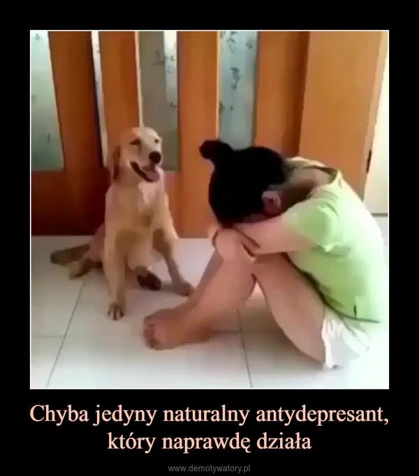 Chyba jedyny naturalny antydepresant, który naprawdę działa –