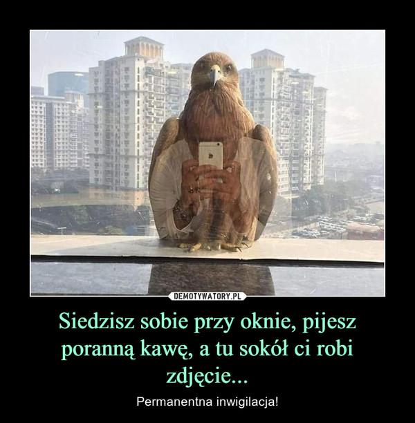 Siedzisz sobie przy oknie, pijesz poranną kawę, a tu sokół ci robi zdjęcie... – Permanentna inwigilacja!