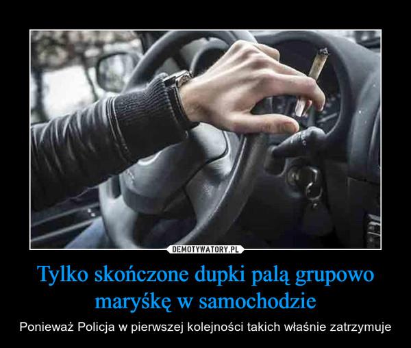 Tylko skończone dupki palą grupowo maryśkę w samochodzie – Ponieważ Policja w pierwszej kolejności takich właśnie zatrzymuje
