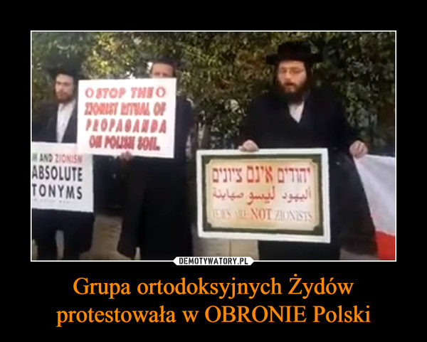 Grupa ortodoksyjnych Żydów protestowała w OBRONIE Polski –