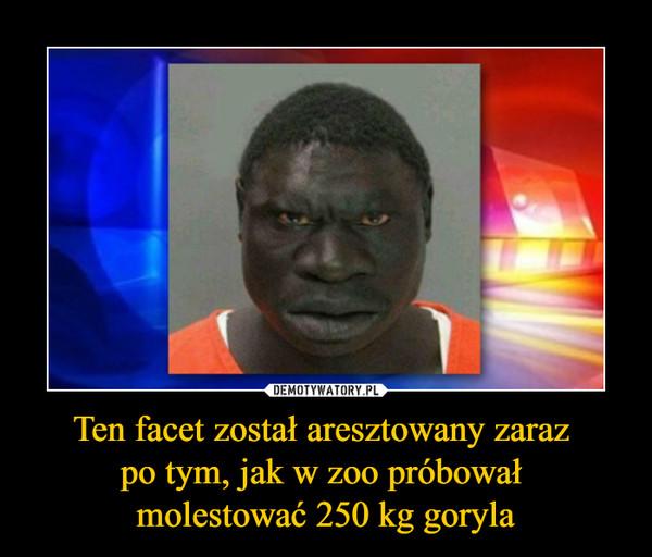 Ten facet został aresztowany zaraz po tym, jak w zoo próbował molestować 250 kg goryla –