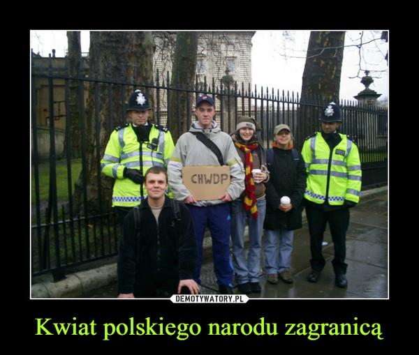 Kwiat polskiego narodu zagranicą –