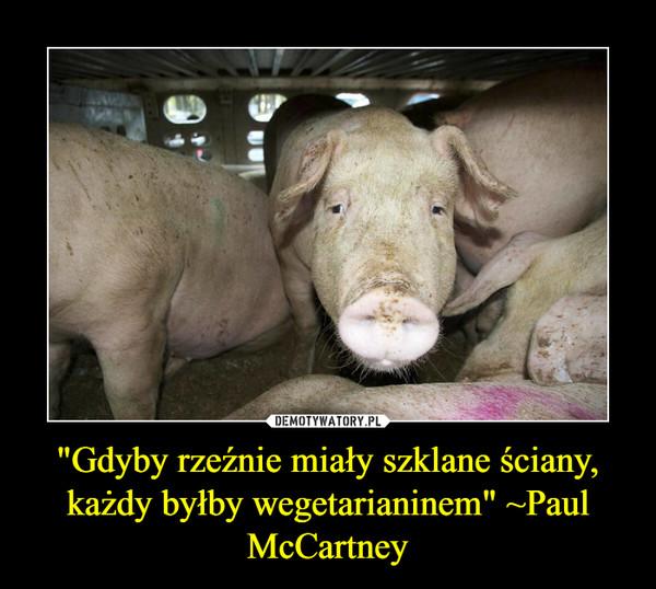 """""""Gdyby rzeźnie miały szklane ściany, każdy byłby wegetarianinem"""" ~Paul McCartney –"""