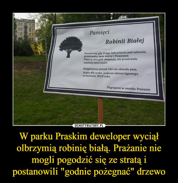 """W parku Praskim deweloper wyciął olbrzymią robinię białą. Prażanie nie mogli pogodzić się ze stratą i postanowili """"godnie pożegnać"""" drzewo –"""