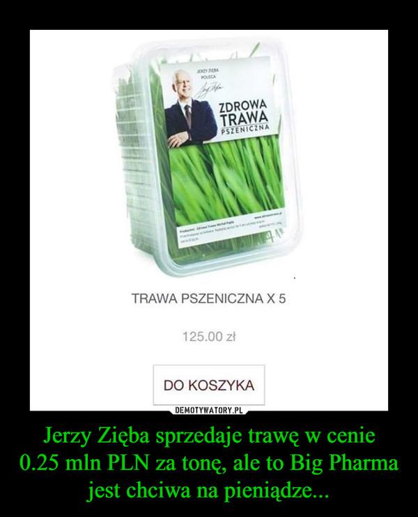 Jerzy Zięba sprzedaje trawę w cenie0.25 mln PLN za tonę, ale to Big Pharma jest chciwa na pieniądze... –