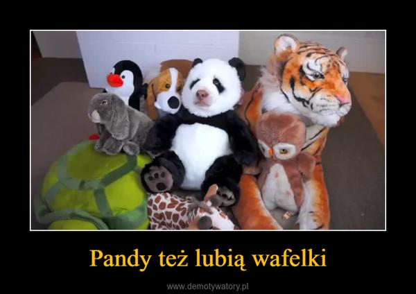 Pandy też lubią wafelki –