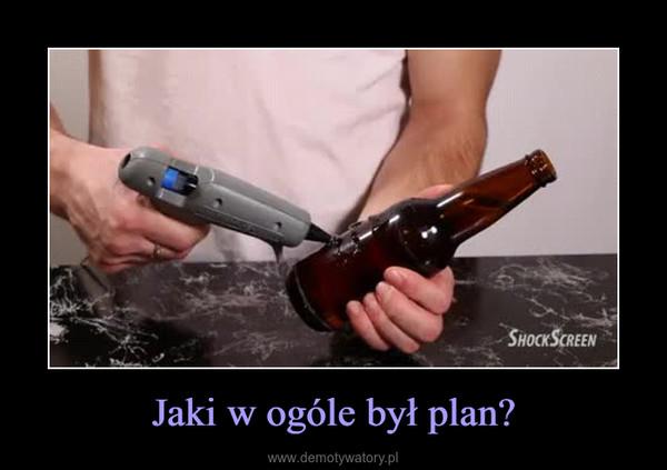 Jaki w ogóle był plan? –