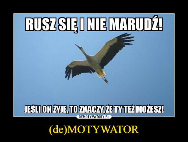 (de)MOTYWATOR –