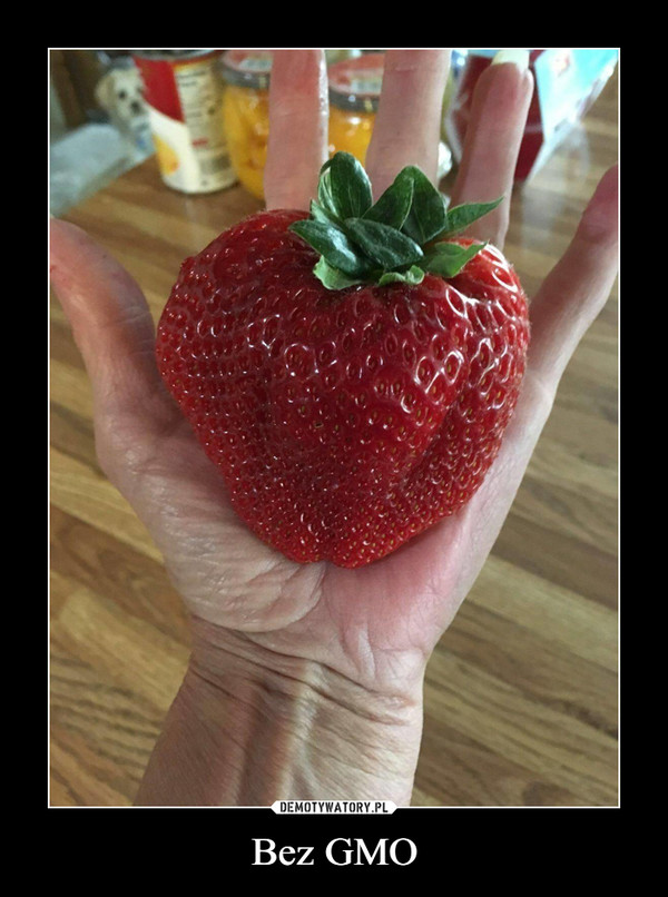 Bez GMO –