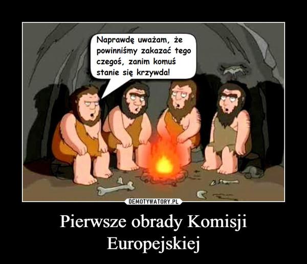 Pierwsze obrady Komisji Europejskiej –  Naprawdę uważam, żepowinniśmy zakazać tegoczegoś, zanim komu:śstanie się krzywda!
