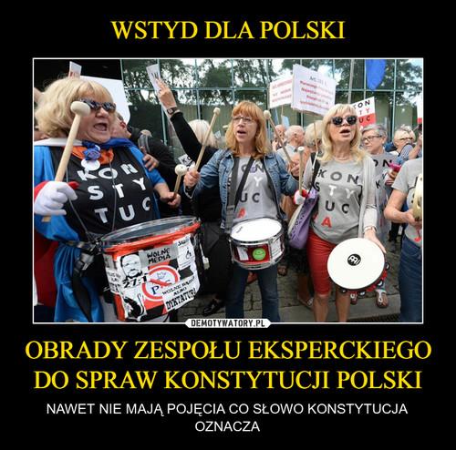 WSTYD DLA POLSKI OBRADY ZESPOŁU EKSPERCKIEGO DO SPRAW KONSTYTUCJI POLSKI