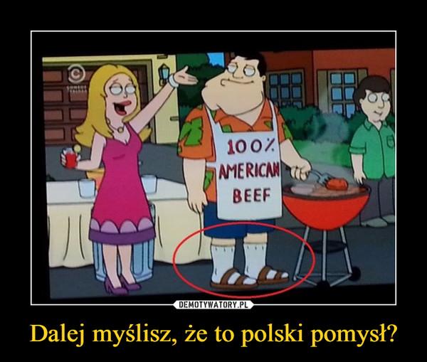 Dalej myślisz, że to polski pomysł? –