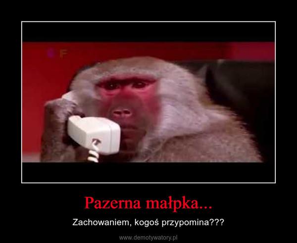 Pazerna małpka... – Zachowaniem, kogoś przypomina???