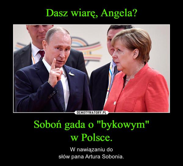 """Soboń gada o """"bykowym""""w Polsce. – W nawiązaniu dosłów pana Artura Sobonia."""