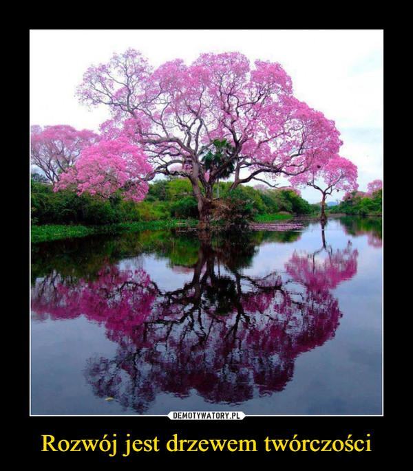 Rozwój jest drzewem twórczości –