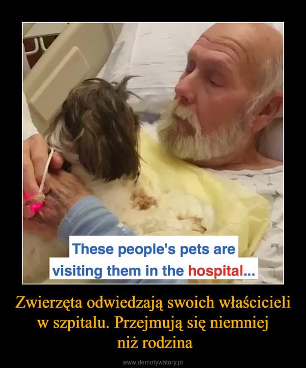 Zwierzęta odwiedzają swoich właścicieli w szpitalu. Przejmują się niemniej niż rodzina –
