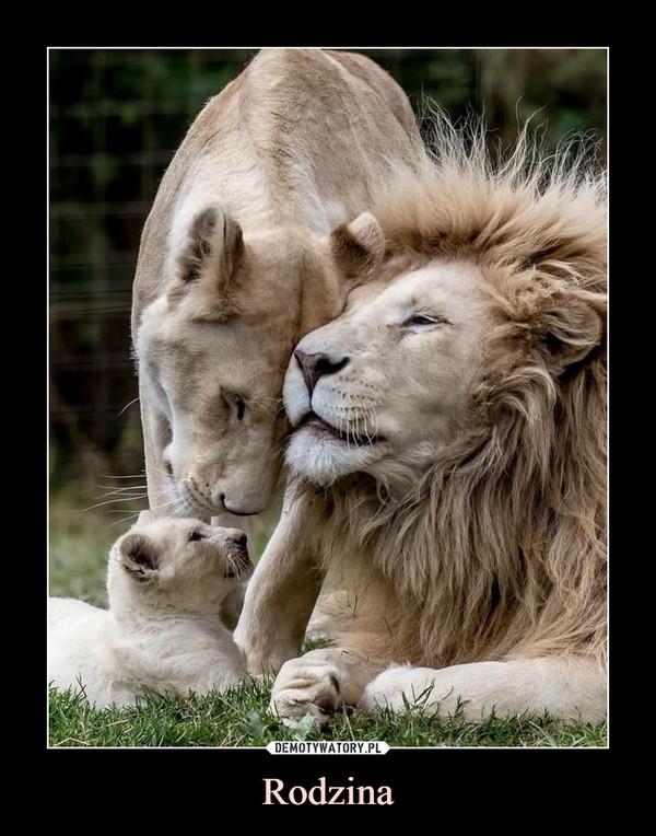 Rodzina –