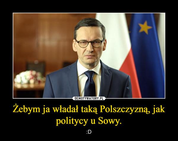 Żebym ja władał taką Polszczyzną, jak politycy u Sowy. – :D