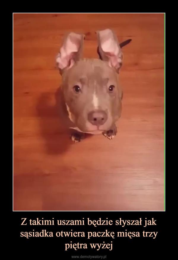 Z takimi uszami będzie słyszał jak sąsiadka otwiera paczkę mięsa trzy piętra wyżej –