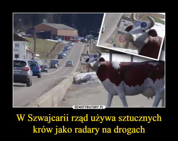 W Szwajcarii rząd używa sztucznych krów jako radary na drogach –