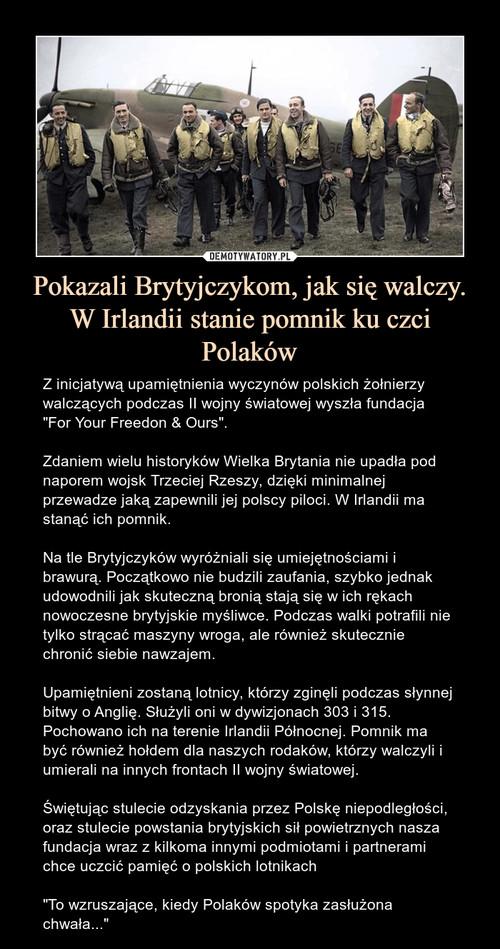 Pokazali Brytyjczykom, jak się walczy. W Irlandii stanie pomnik ku czci Polaków